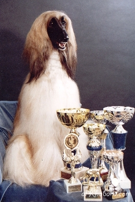 2000 Favo and her trophies.