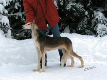 Helmi 14 year old - January 2012