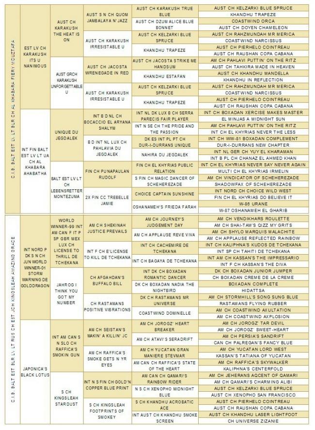 pedigree of E-litter 6 gen