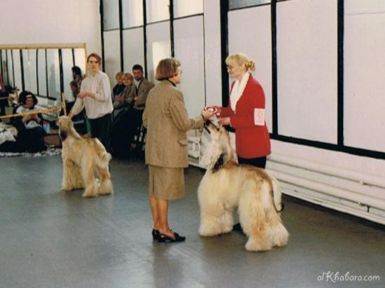 1996pepsi-sbis