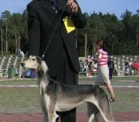 bos-keila-1