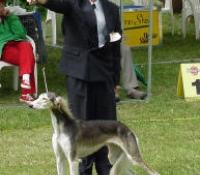 2001 Helmi FIN CH