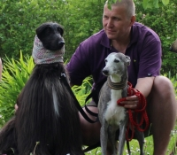 Tentel- AK Extravagza and whippet Lotta her friend