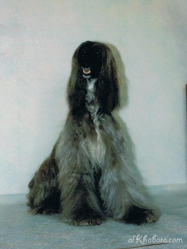 1997meeri