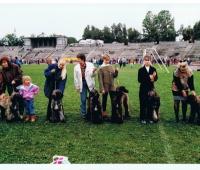 1994meeting