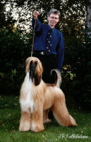 2004_mouzihq