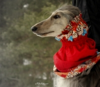 mg_9863-red-fabric-snood-roxanna