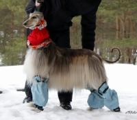 mg_9874-w-blue-grey-2x-leggings-rox