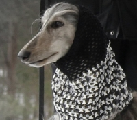 mg_9918-variegated-snood-roxanna-fb